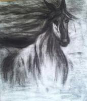 schilderij paard houtskool