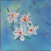 speciaal effect,witte bloemetjes