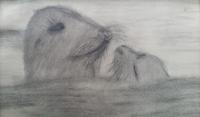 schilderij zeehondjes